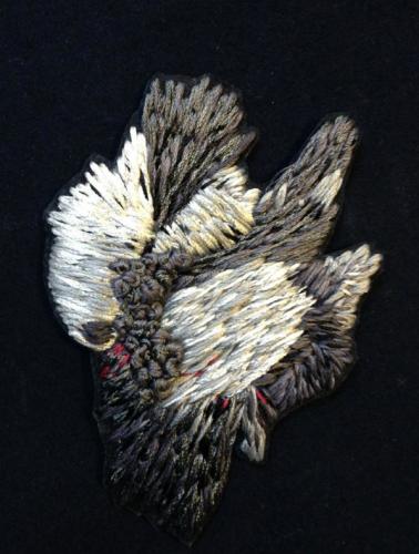 Claire Barrow flat pigeon