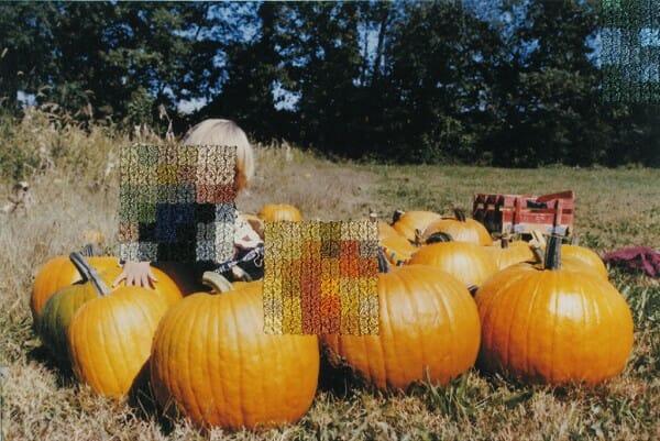 Diane Meyer - New Jersey I - cross stitch on photograph