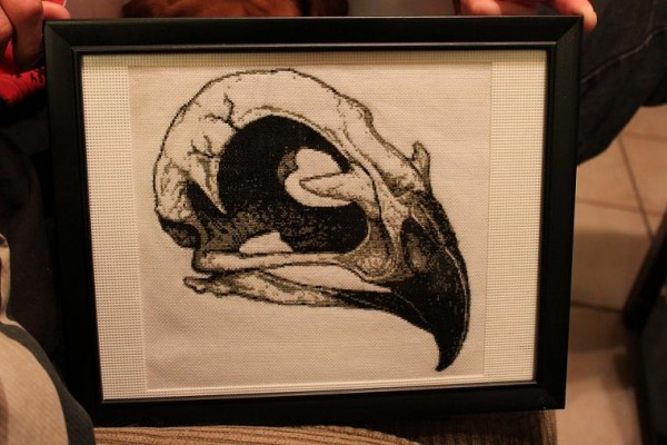 Sarah Hamilton - Hawk skull cross stitch