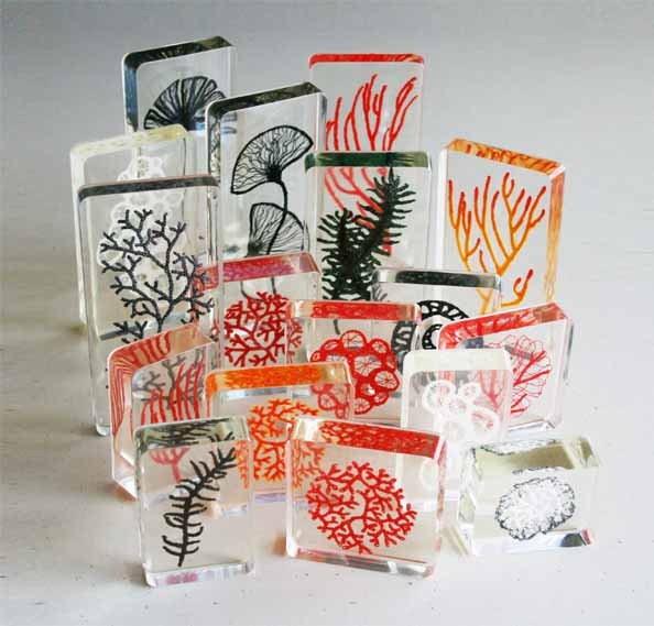 Meredith Woolnough - Clear Resin Collection