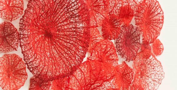 Meredith Woolnough - Mushroom Coral