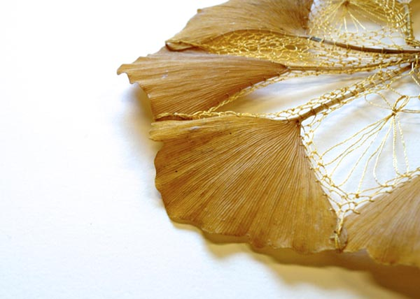 Ginkgo Leaves 03, by Hillary Waters Fayle
