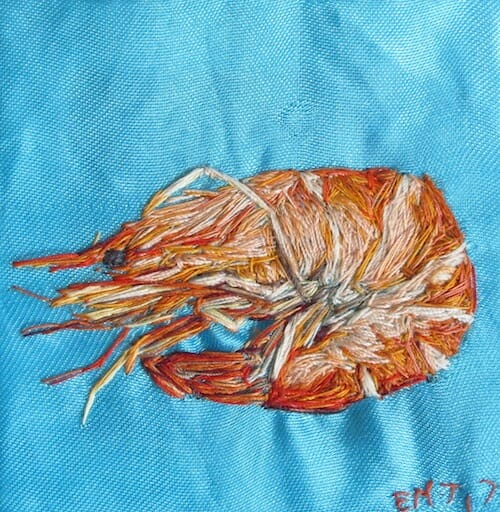 Emily Tull - Prawn - Hand Embroidery