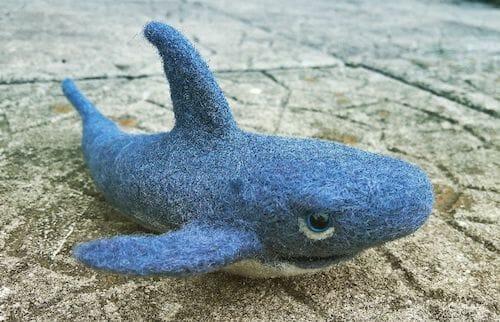 NoseyToes - Shark