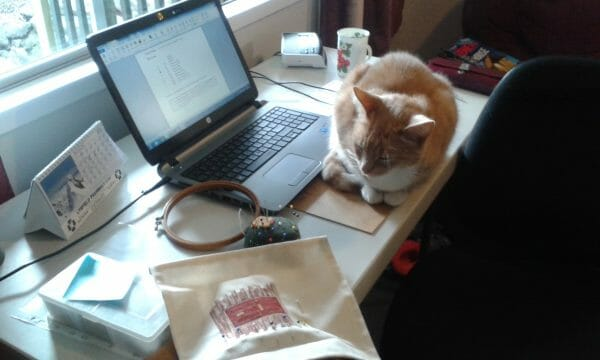 Cherry's bright work area and furry assistant, Zac.