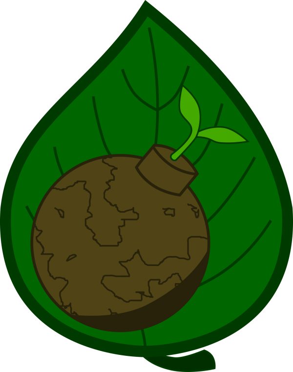 seed bomb on leaf patch