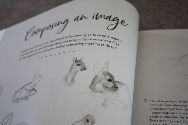 Image composition skills are explained, using her drawings skills to visually illustrate the progress stages.