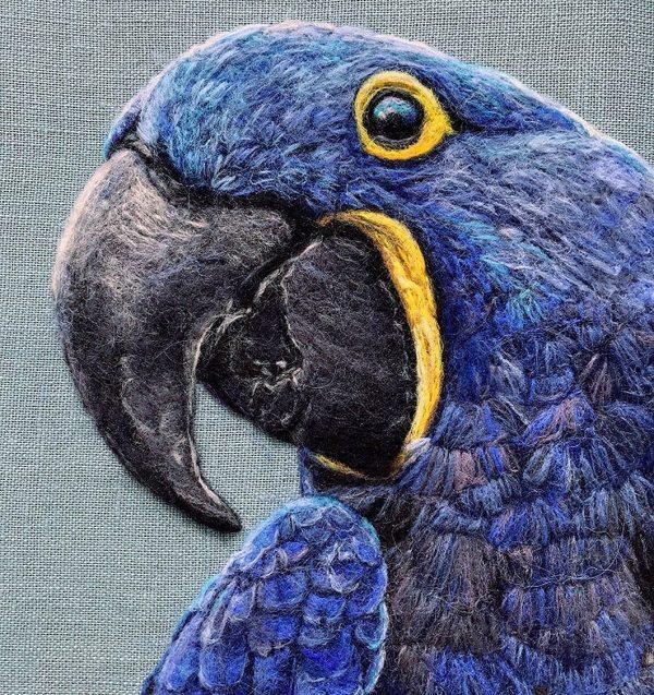 Dani Ives - Blue Parrot