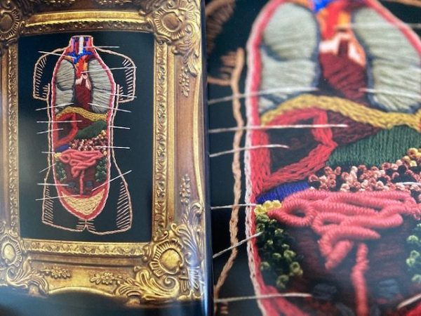 Stitchcraft: An Embroidery Book of Simple Stitches and Peculiar Patterns - close up